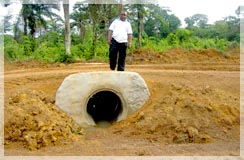 Charles Davis, Asst Operations Mgr Liberia, on one of many culverts installed to make the new road year round accessible for drill rigs and equipment / Toto Range