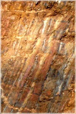 Mafic Schist host incalated with multiple small quartz veins / Belefuani Toto Range