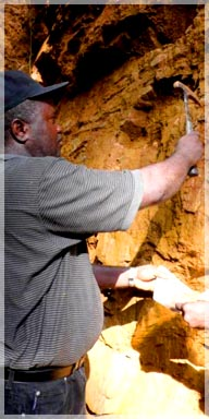 Geologist sampling mafic schist and quartz in hanging wall that yielded high grades / Belefunai Toto Range